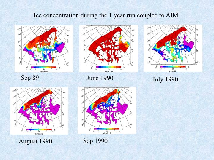 Ice concentration during the 1 year run coupled to AIM
