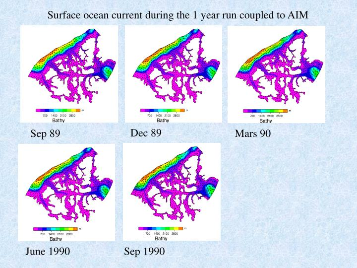 Surface ocean current during the 1 year run coupled to AIM