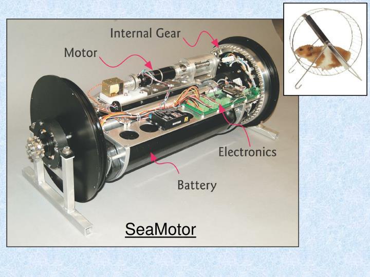 SeaMotor