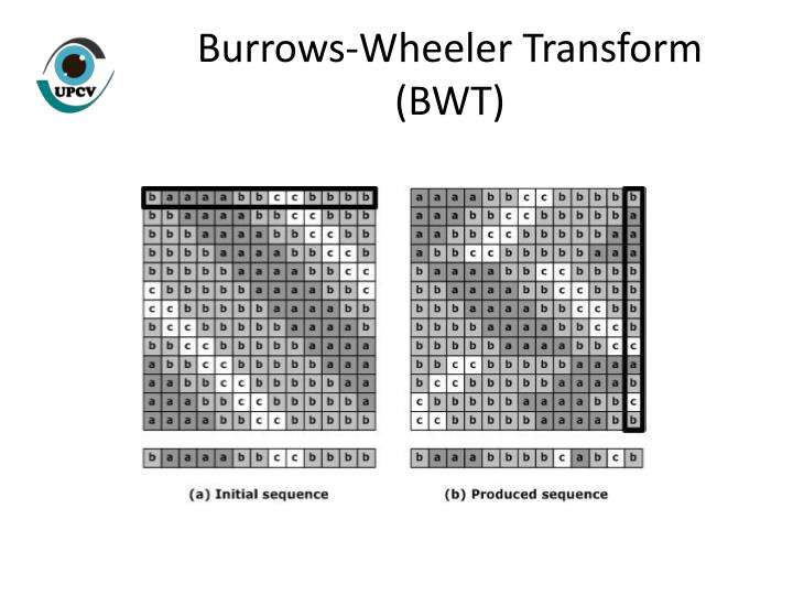 Burrows-Wheeler Transform (BWT)