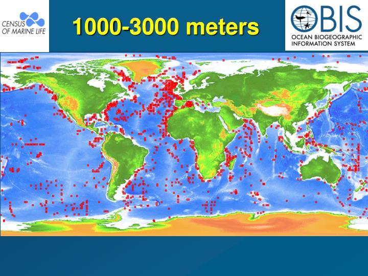 1000-3000 meters