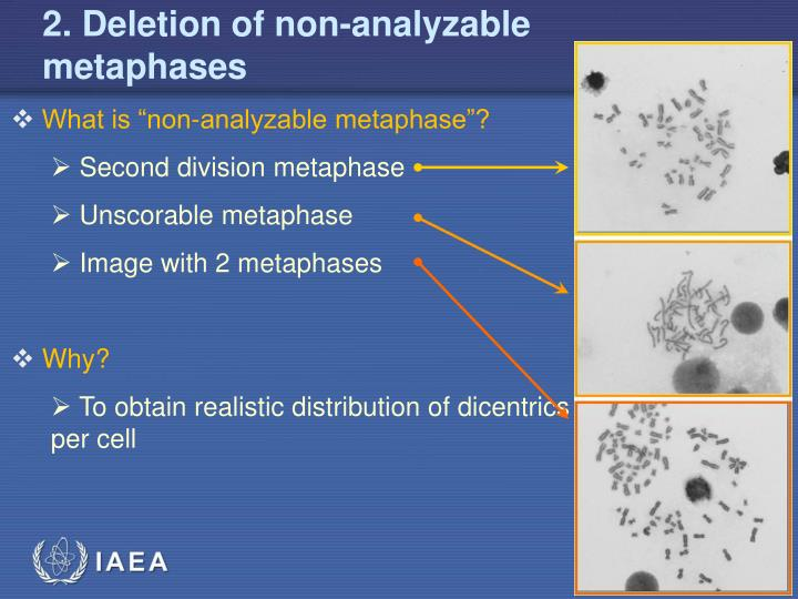 2. Deletion of non-analyzable metaphases