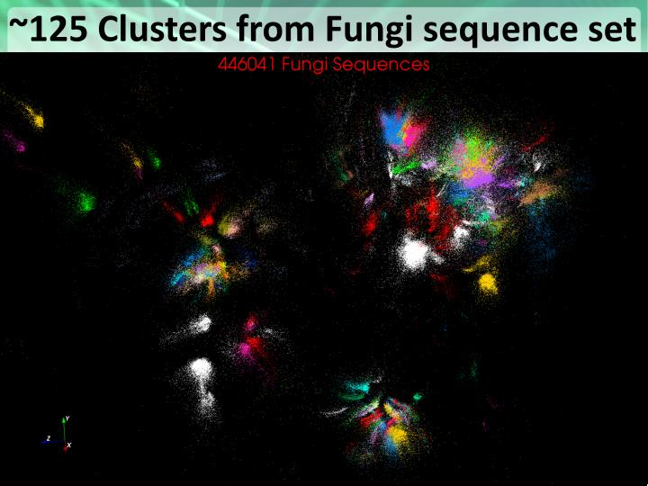 ~125 Clusters from Fungi sequence set
