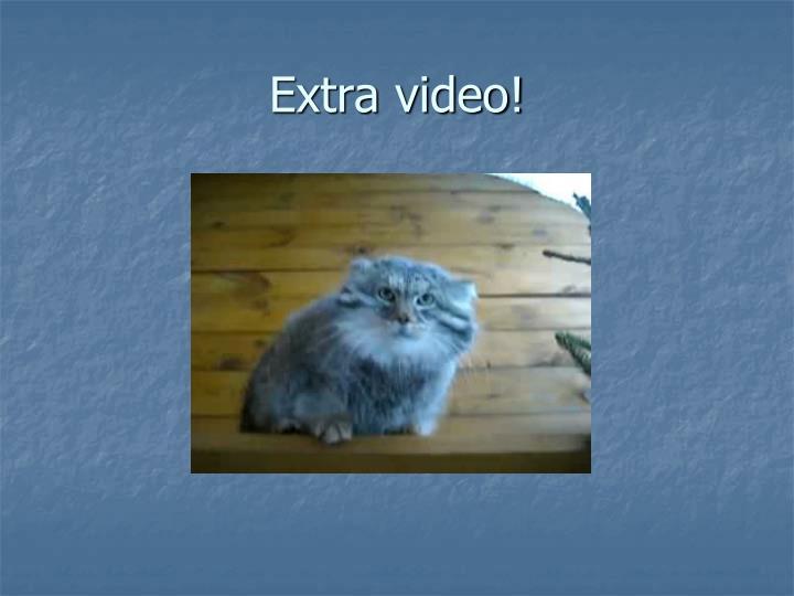 Extra video!