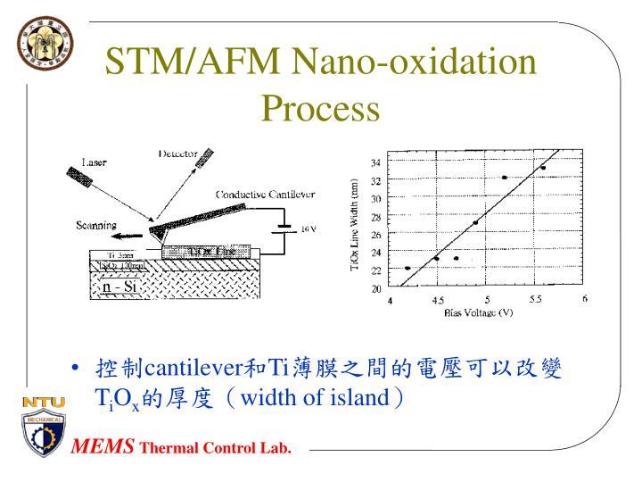 STM/AFM Nano-oxidation Process