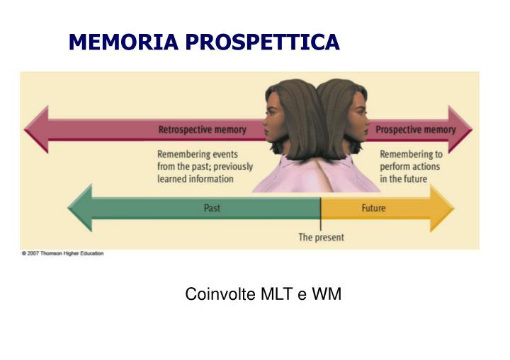MEMORIA PROSPETTICA