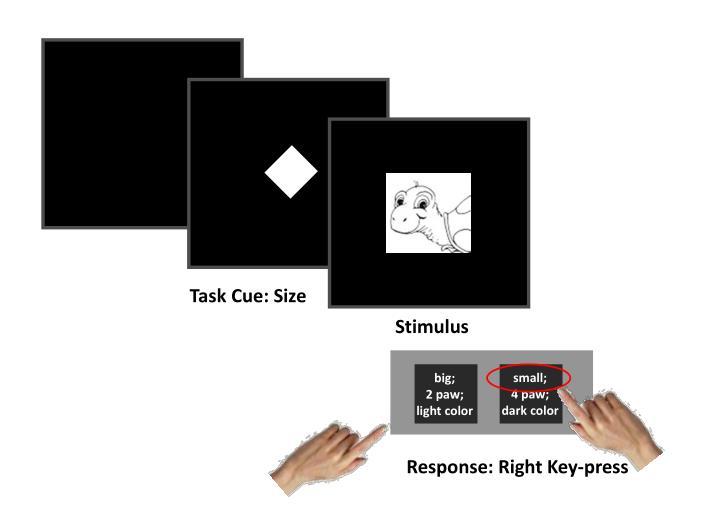Task Cue: