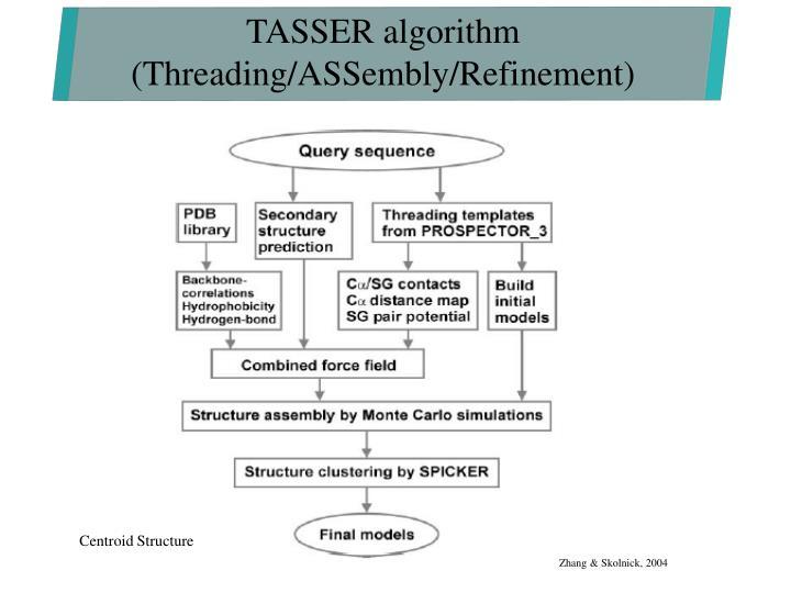 TASSER algorithm