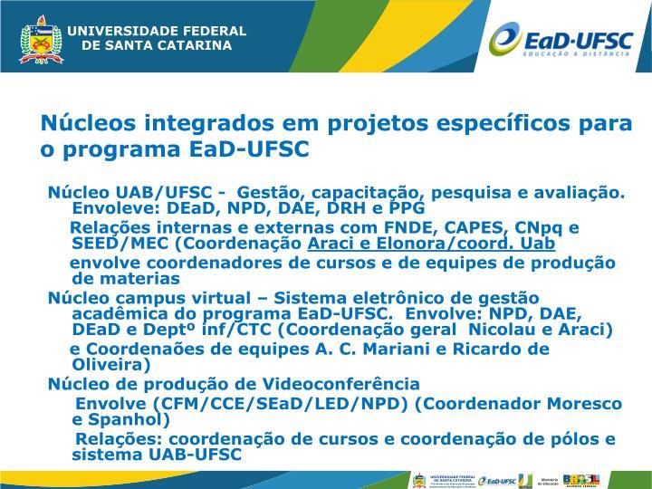 Núcleo UAB/UFSC -  Gestão, capacitação, pesquisa e avaliação. Envoleve: DEaD, NPD, DAE, DRH e PPG