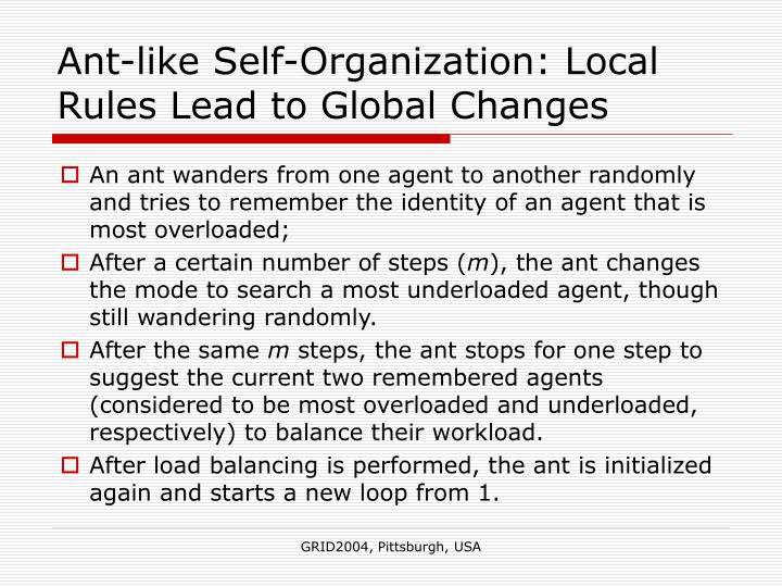 Ant-like Self-Organization: Local Rules Lead to Global Changes