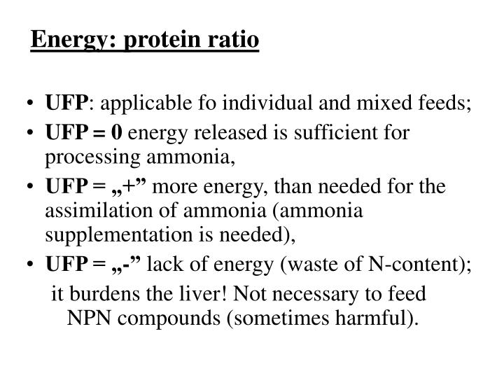 Energy: protein ratio