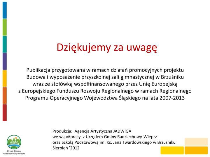 Publikacja przygotowana w ramach działań promocyjnych projektu