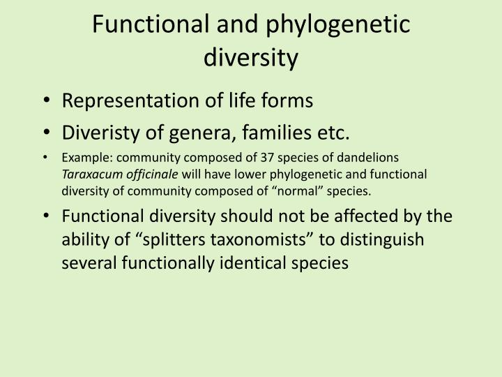 Functional and phylogenetic diversity