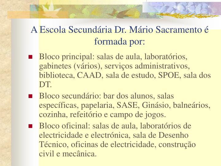 A Escola Secundária Dr. Mário Sacramento é formada por: