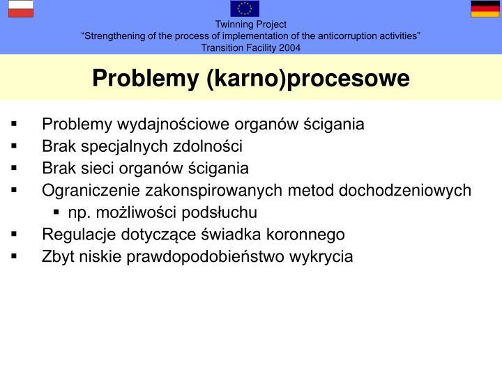 Problemy (karno)procesowe