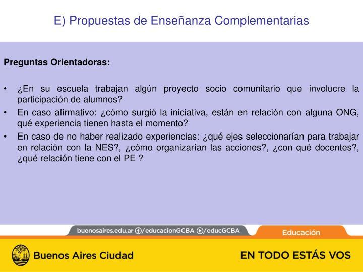 E) Propuestas de Enseñanza Complementarias