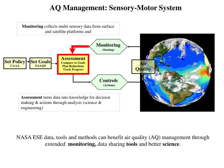 AQ Management: Sensory-Motor System