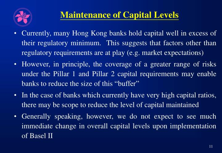 Maintenance of Capital Levels