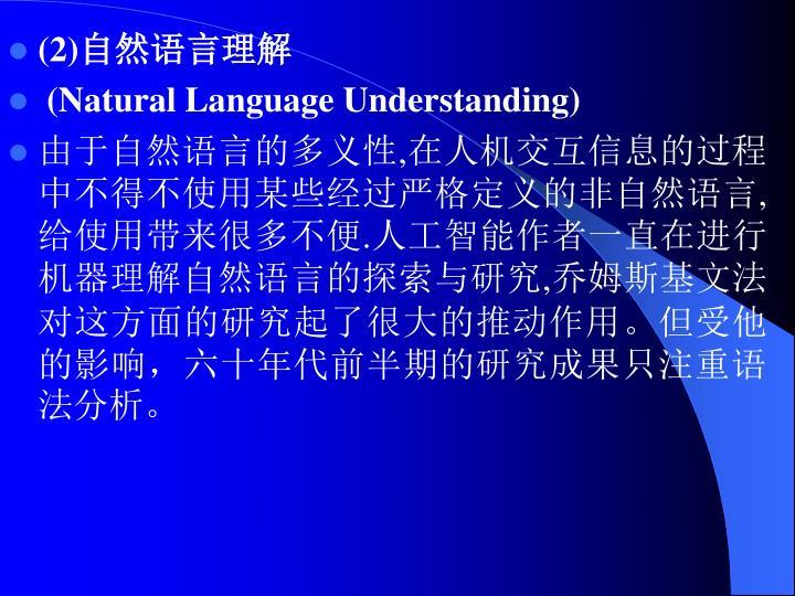 (2)自然语言理解