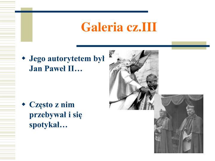 Galeria cz.III