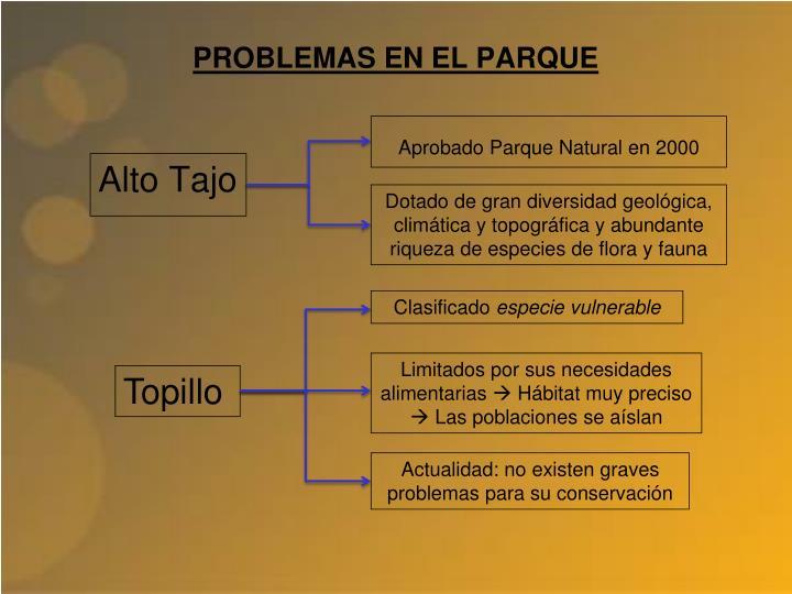 PROBLEMAS EN EL PARQUE