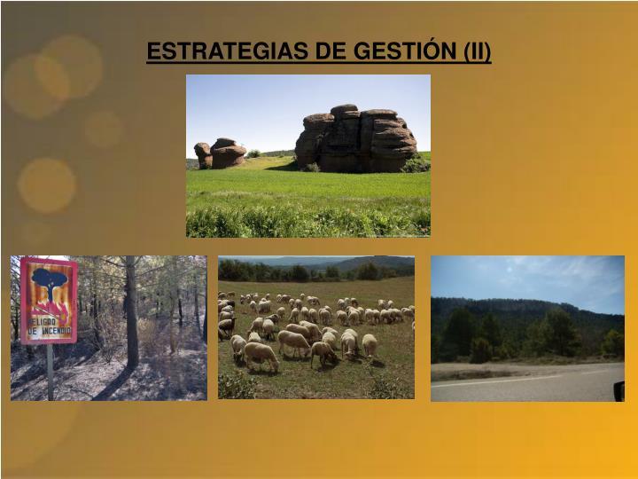 ESTRATEGIAS DE GESTIÓN (II)