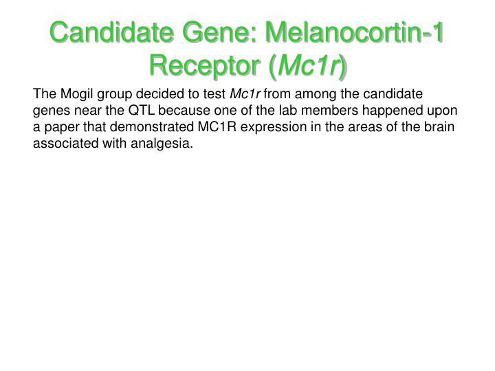 Candidate Gene: Melanocortin-1 Receptor (