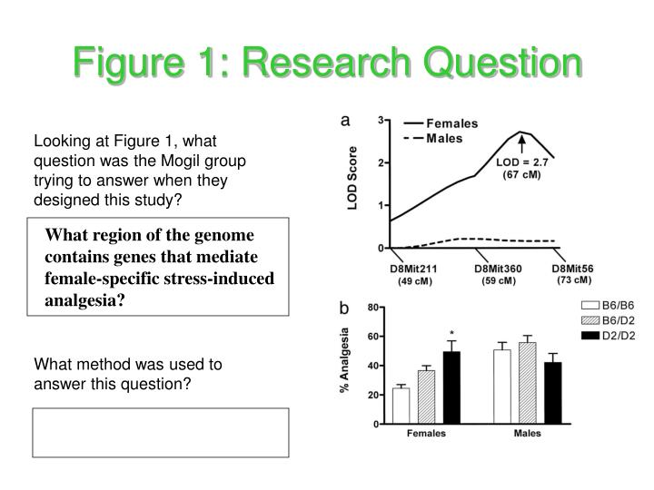 Figure 1: Research Question