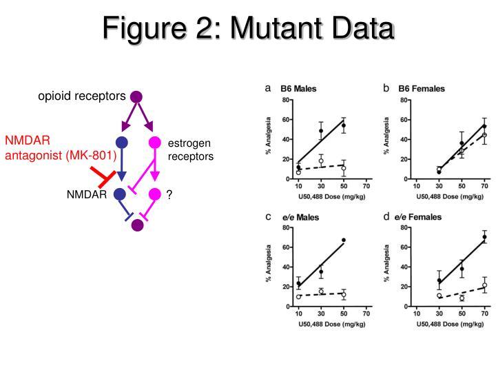 Figure 2: Mutant Data