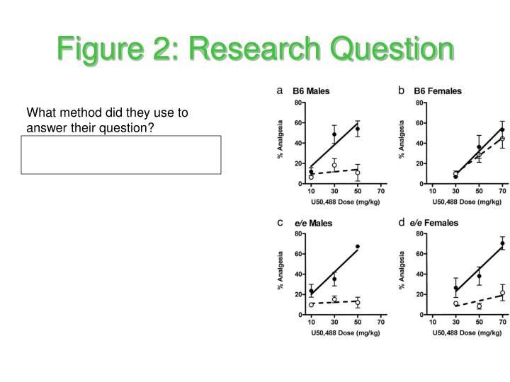 Figure 2: Research Question