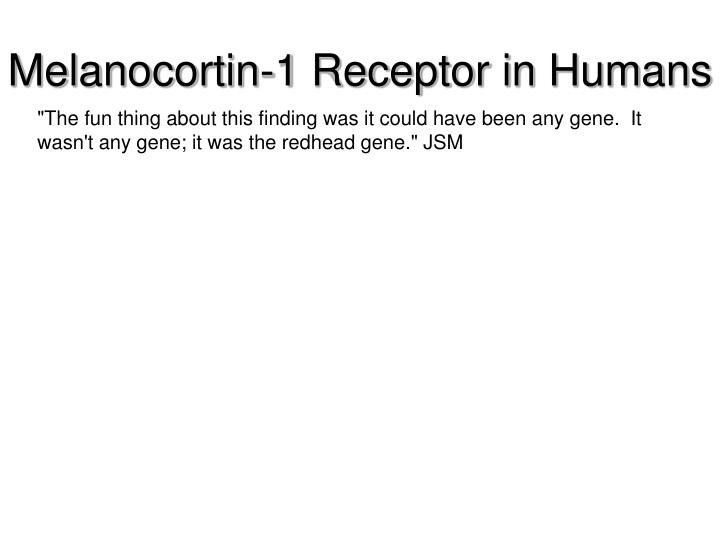 Melanocortin-1 Receptor in Humans