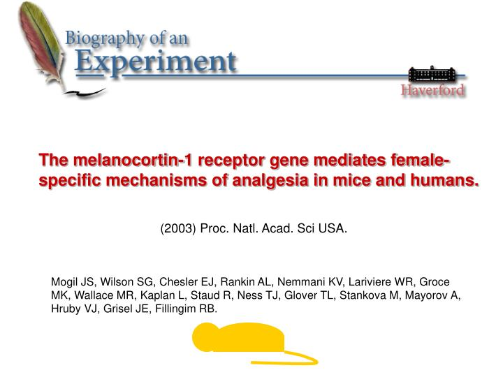 The melanocortin-1 receptor gene mediates female-specific mechanisms of analgesia in mice and humans...