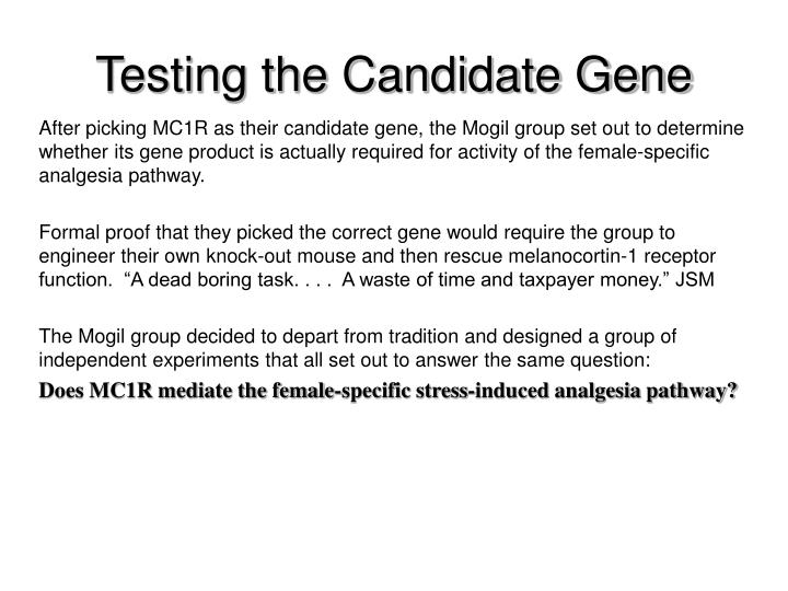 Testing the Candidate Gene