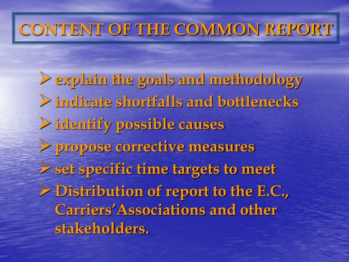 CONTENT OF THE COMMON REPORT