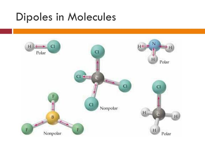 Dipoles in Molecules