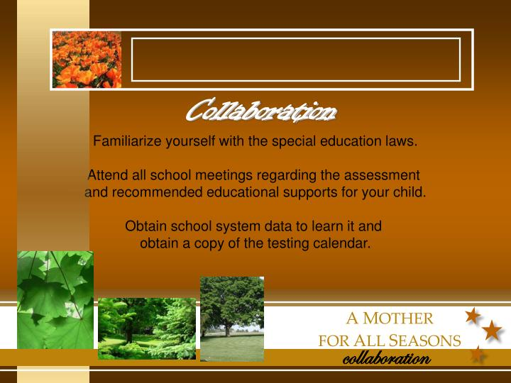 Familiarize yourself with the special education laws.