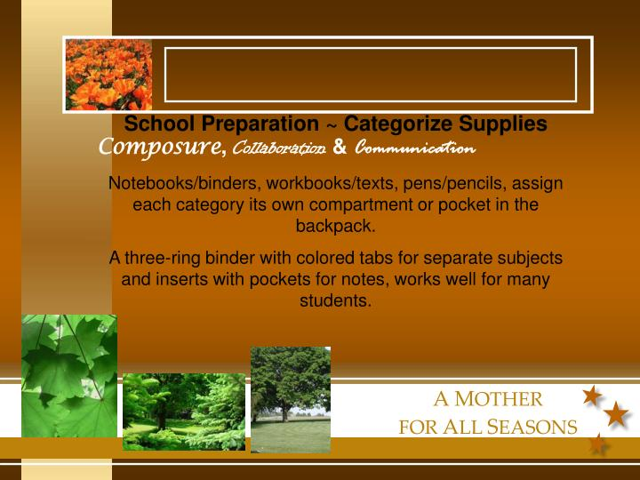 School Preparation ~ Categorize Supplies