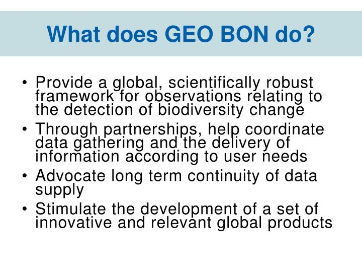What does GEO BON do?