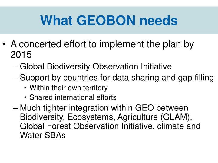 What GEOBON needs