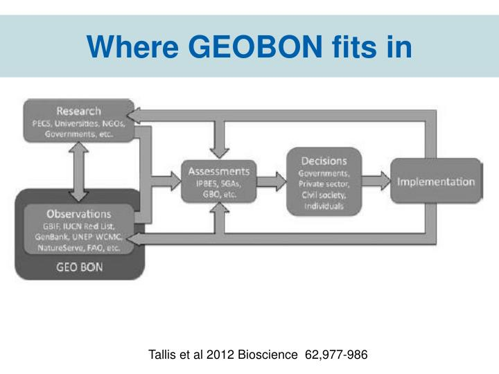 Where GEOBON fits in