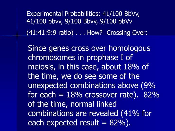 Experimental Probabilities: 41/100 BbVv, 41/100 bbvv, 9/100 Bbvv, 9/100 bbVv