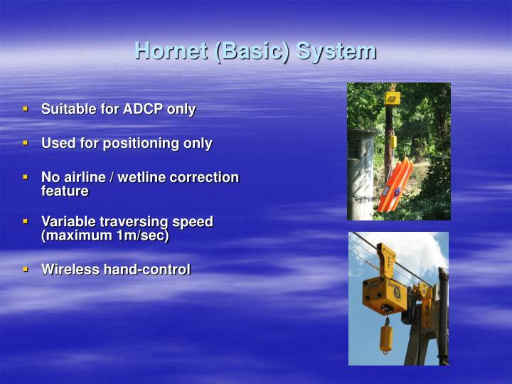 Hornet (Basic) System