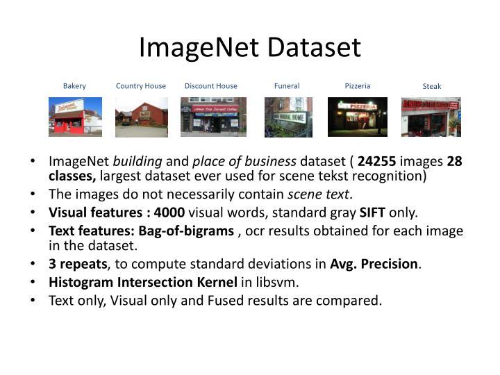 ImageNet Dataset