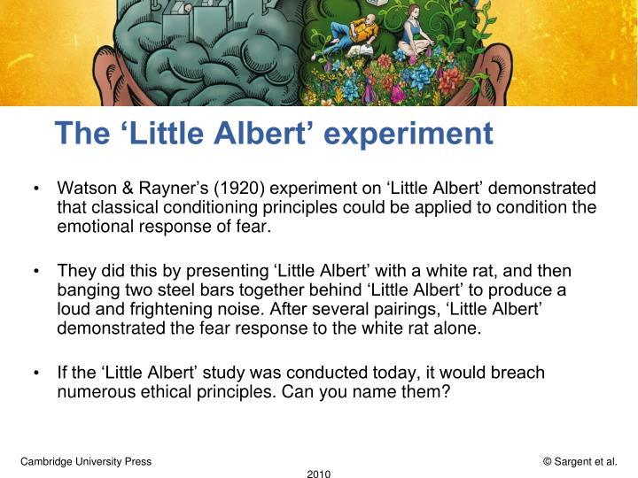 The 'Little Albert' experiment