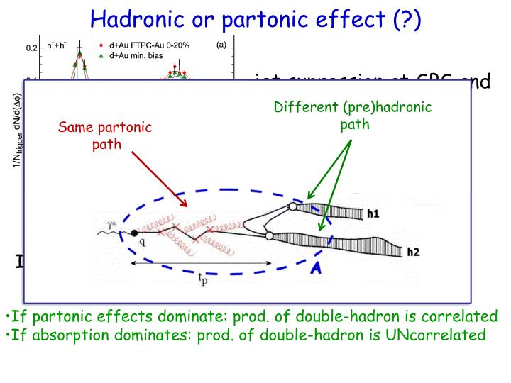 Hadronic or partonic effect (?)