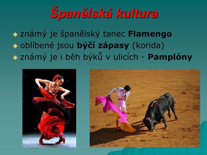 Španělská kultura