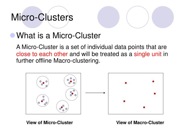 Micro-Clusters