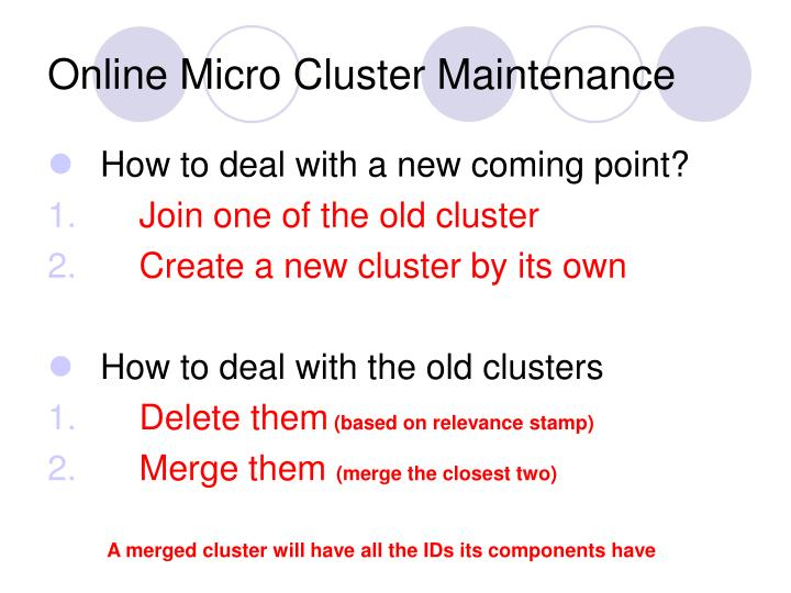 Online Micro Cluster Maintenance