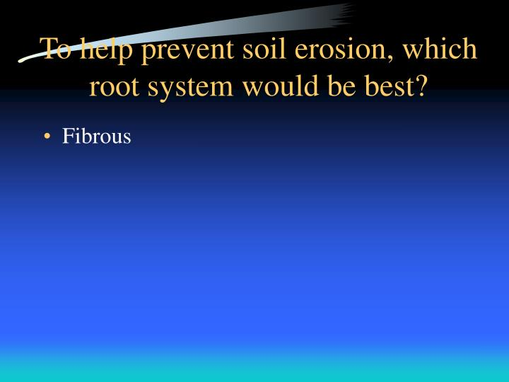 To help prevent soil erosion, which root system would be best?