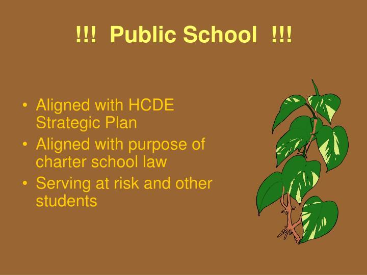!!!  Public School  !!!